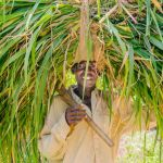 Face to face with a grass cutter from Kano